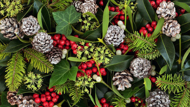Decking the halls of history: the origins of Christmas decorations