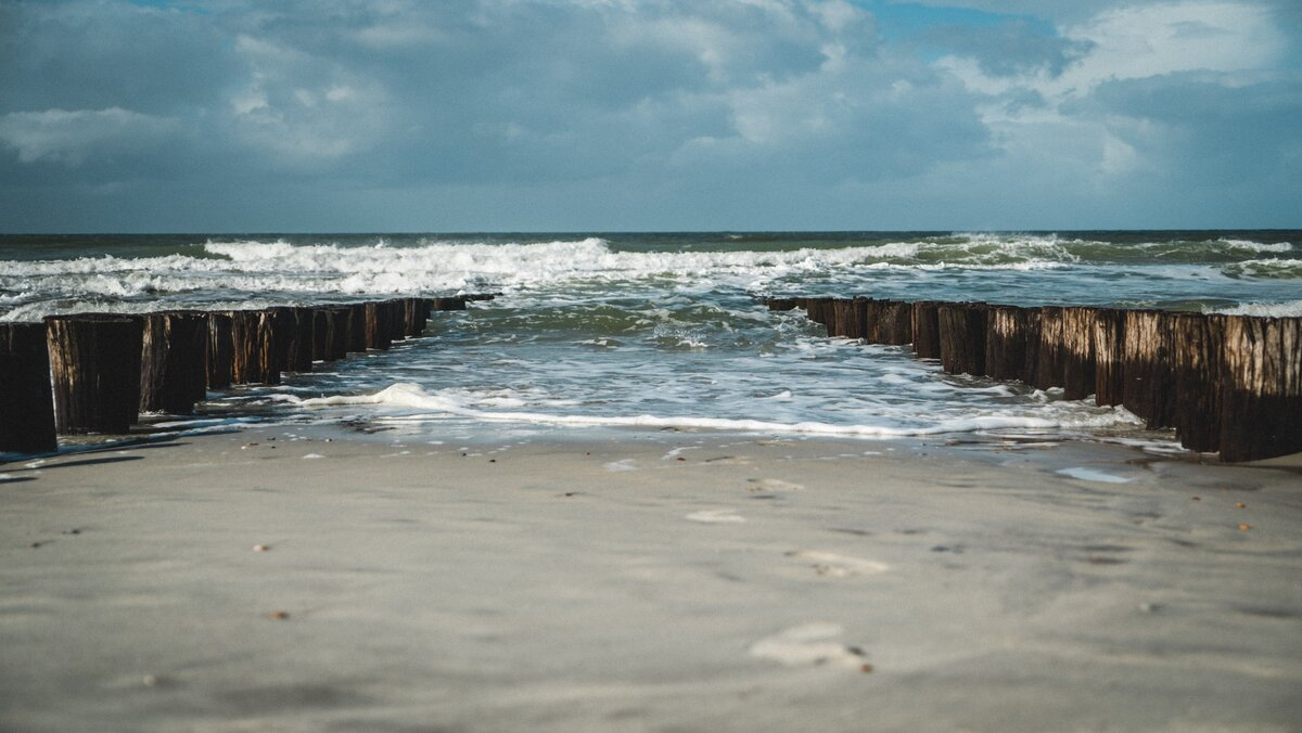Doggerland: The Lost World Beneath the North Sea