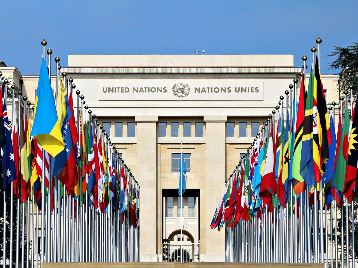 A program for peace: The founding of the United Nations